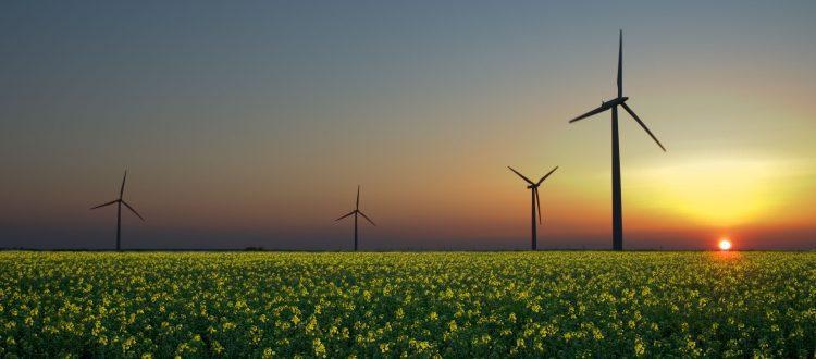 General Motors Promises 100% Renewable Energy Sources by 2050
