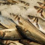 Sales and Turnover Increase at Thistle Seafoods