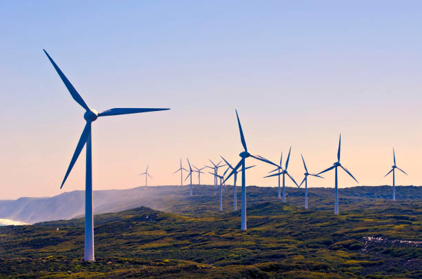 Urgent Focus Needed for the Renewable Energy Sector